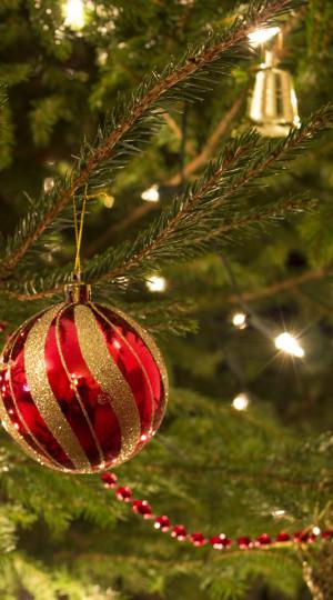 VTC Kerstbomen